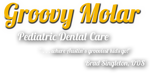 Brad Singleton DDS Pediatric Dentist, 512-349-9500, Austin, TX